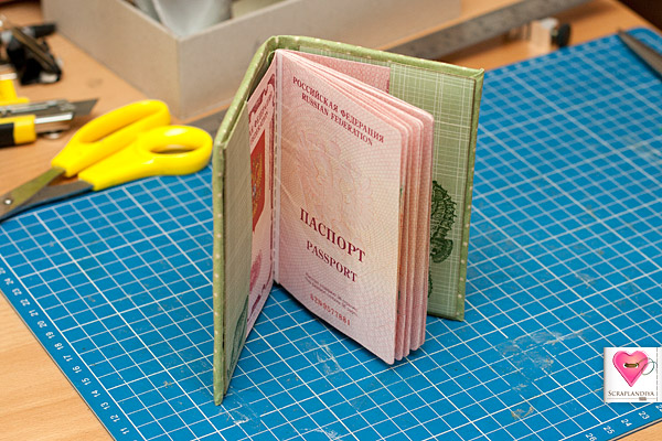 Как можно сделать паспорт своими руками 197